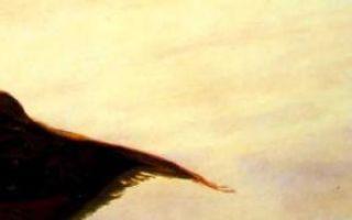 Васнецов «ковер-самолет» описание картины, анализ, сочинение