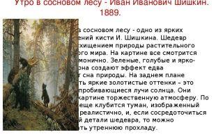 Шишкин иван «утро в сосновом лесу» описание картины, анализ, сочинение