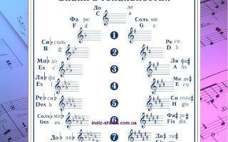 Что такое тональность в музыке, учимся определять и изменять тональности