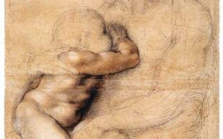 Буонарроти микеланджело «леда и лебедь» описание картины, анализ, сочинение