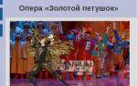 Опера «золотой петушок»: интересные факты, видео, содержание