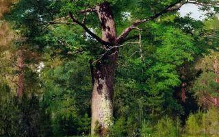 Левитан «пасмурный день на москве-реке» описание картины, анализ, сочинение
