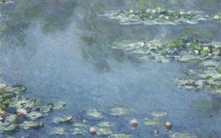 Моне клод «белый мак» описание картины, анализ, сочинение