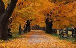 Левитан исаак «золотая осень» описание картины, анализ, сочинение