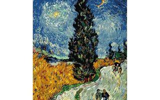Винсент ван гог «ирисы» описание картины, анализ, сочинение
