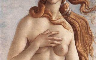 Боттичелли «паллада и кентавр» описание картины, анализ, сочинение